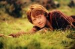 Harry Potter - das schwerste vom Schwerstem
