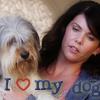Wie heißt der Hund, den sich Lorelai in der 6 Staffel anschafft?