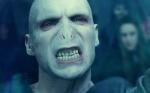 Wie stehst du zu Lord Voldemort?
