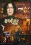 Stimmt es, dass Snape nie sein Traumfach unterrichten durfte?