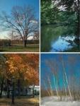 Welche Jahreszeit magst du am liebsten?