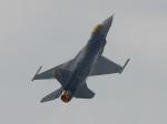 Welche Maximale Belastbarkeit (G-Kraft) besitzt die F-16?