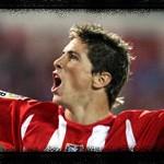 Wo und wann wurde Fernando Torres geboren?