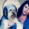 Wie heißt Lorelais Hund (6 Staffel)?