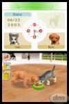 Nintendogs Hundehalter-Test