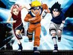 So als erstes eine einfache Frage:Wie alt sind Naruto, Sakura, Sasuke?