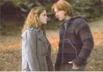Worauf weißt Hermine Ron bei ihrer ersten Zugfahrt hin?