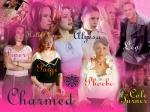 Es gibt 8 Charmed-Staffeln.