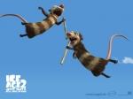 Wie heißen die beiden Opossums?