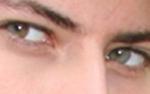 Dieser Blick aus stechend grünen Augen kann nur einem gehören!