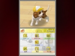 Quiz für Nintendogs-Trainer