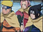 Im Team 7 sind Naruto Uchiha, Sasuke Uzumaki und Sakura Haruno.