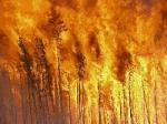 Wir werden nun erstmal zu jedem Element deine persönliche Wahrnehmung testen: Feuer...