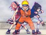 Sasuke, Naruto und Sakura sind im Team 9!