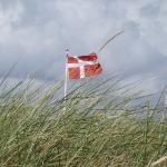 Und von Dänemark?