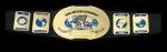 Wer war der erste Intercontinental Champion der WWE?