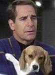 Welcher Star-Trek-Captain bist du?