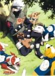 Wie heißt das Jutsu, mit dem Kakashi das Juin von Sasuke versiegelt?