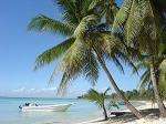 Du hast mit deiner Freundin einen Urlaub an der Karibik gewonnen. Wie fühlst du dich?