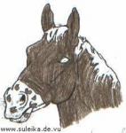 Das Abzeichen des Pferdes (linkes Bild) ist ein Milchmaul!