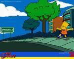 In welcher Stadt leben die Simpsons?