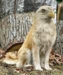 Und nun mein absoluter Liebling:Welches schöne Geschöpf ist hier zu sehen?