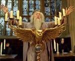 Und zu Guter Letzt: Wer tötete Dumbledore?