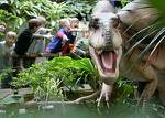 Welcher Dino lebte in Gruppen und jagte größere Dinos?