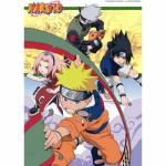 Sakuras, Sasukes und Narutos Team ist mit dem Team von Temari, Gaara und Kankuru in der Chunninprüfung komplett geblieben.