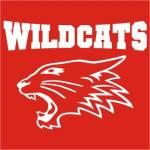 Welche Farbe hat die East High bzw. Die Wildcats?