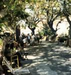 In der so genannten Künstlerstraße sitzen begabte Maler und Zeichner, die die Touristen karikieren oder fotorealistisch auf Papier bannen. Diese Str
