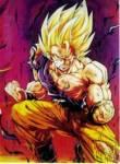 Wie heißt der Zwillingsbruder von Son-Goku?