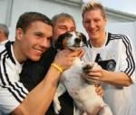 Schweini und Poldi spielen beim HSV.