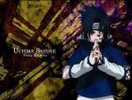 Von wem erlernt Sasuke, das Mal des Fluches zu beherrschen?