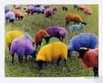 Als Sie morgen aufwachen, bemerken Sie ein Schaf, dass Ihre Wand in einem hässlichen Grün streicht.Was tun Sie?