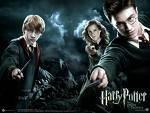 Was möchte Harry später einmal werden?