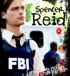 Wie viele Doktortitel hat SA Spencer Reid?