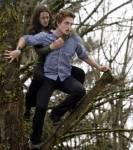 Wie geht folgendes Zitat weiter?Edward: Und so verliebte sich der Löwe in das Lamm.Bella: Was für ein dummes Lamm.