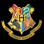Es ist der Brief aus Hogwarts. Wie reagierst du?