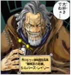 One Piece - für Fans auf aktuellstem japanischen Stand! (Juli ´09)