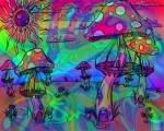 Psychedelic Rock hatte seinen Höhepunkt ...