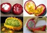Welche Frucht passt zu dir?