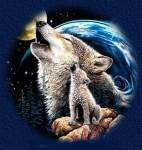 Wolfs-Quiz