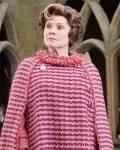 Wen hat Doloris Umbridge, außer Harry noch vom Quidditch ausgeschlossen?