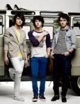 Bestehen die Jonas Brothers auch aus drei Jungs?