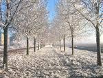 Wie findest du den Winter?