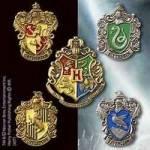 Du freundest dich mit einigen Leuten an und langsam hält der Zug. Ihr steigt aus und ein großer Mann namens Hagrid führt euch einen langen Weg entl