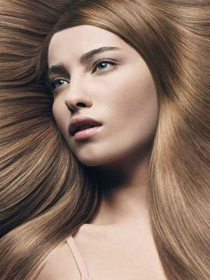 welche barbie bist du aus barbieland. Black Bedroom Furniture Sets. Home Design Ideas