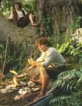 Was war Sams Begründung, damit er mit auf Frodos Reise gehen durfte?
