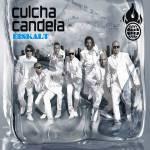 Mixen Culcha Candela Dancehall, Reggae und Hip-Hop zusammen?